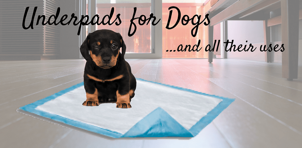 Underpads and bed pads are for dogs, too